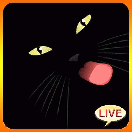 Black Cat Live Wallpaper Icon