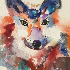 wolf by Jeanne Knoch - Painting All Painting
