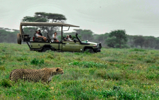 The best place to watch wild animals in Africa