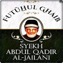 Terjemah Kitab Futuhul Ghaib icon