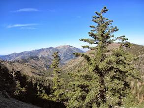 Photo: View west toward Mt. Baden-Powell