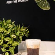 Iced Freddo Cappuccino