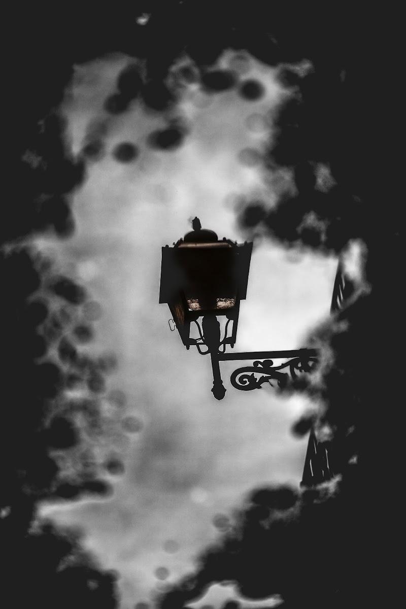 Light inside water di Olivieri Mario