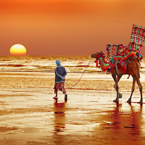 Clifton Sunset by Sami Ur Rahman - People Street & Candids ( clifton beach, camel rider, sunset, reflections, decorated camel )