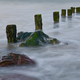 Sun going down and the tide going out by John Holmes - Landscapes Waterscapes ( seaweed, cork, long exposure, sea, peacefull, sand, minimal, pastel, rocks, youghal, beach, sunset, groynes, coastal, ireland, solitude )