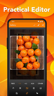 App Simple Gallery - Photo and Video Manager &Editor APK for Windows Phone