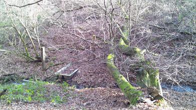 Photo: Hagens wohl einziges Moorbad - an einem Ast des Funckenhausener Bachs unterhalb des Grundstücks Tückinger Schulstraße 1.