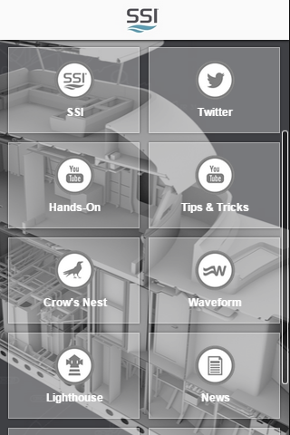 The SSI App