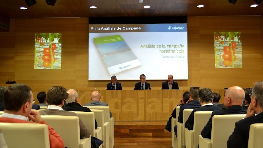 Eduardo baamonde,  junto a Roberto García Torrente y David Uclés, ayer, en la presentación del Informe de Campaña.