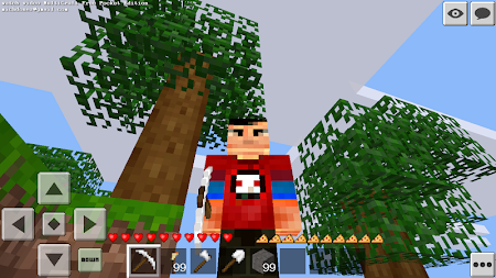 Multicraft Free Pocket Edition 1.6.13.0 screenshot 1057996