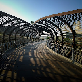 Ribbed Walk by Tim Davies - Instagram & Mobile Other ( ribs, artsy, walkway, bridge, tunnel, covered )