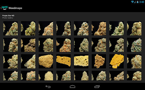 Weedmaps – Marijuana Strains- screenshot thumbnail