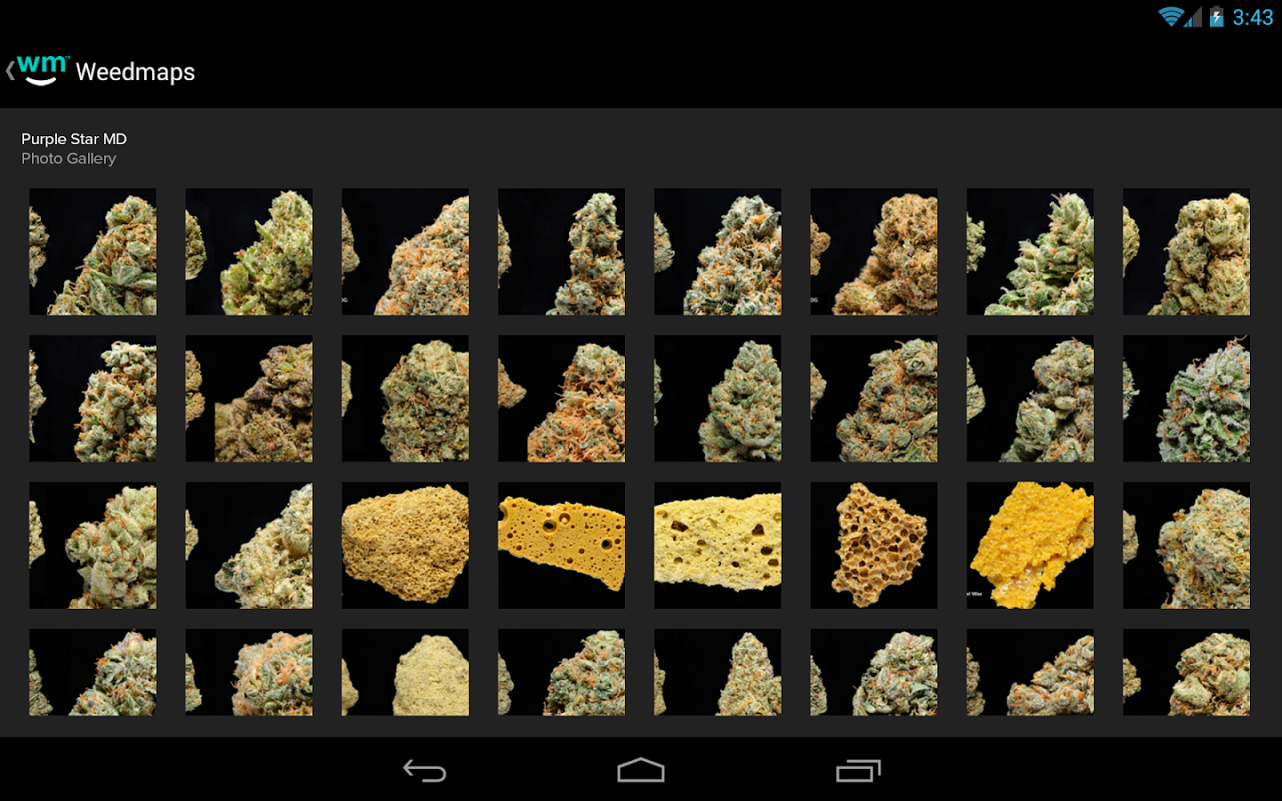 Weedmaps Marijuana Strains- screenshot