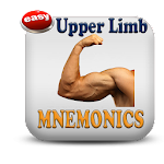 Upper Limb Mnemonics 5