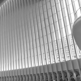 WTC Station - NYC by Antonello Madau - Buildings & Architecture Other Interior