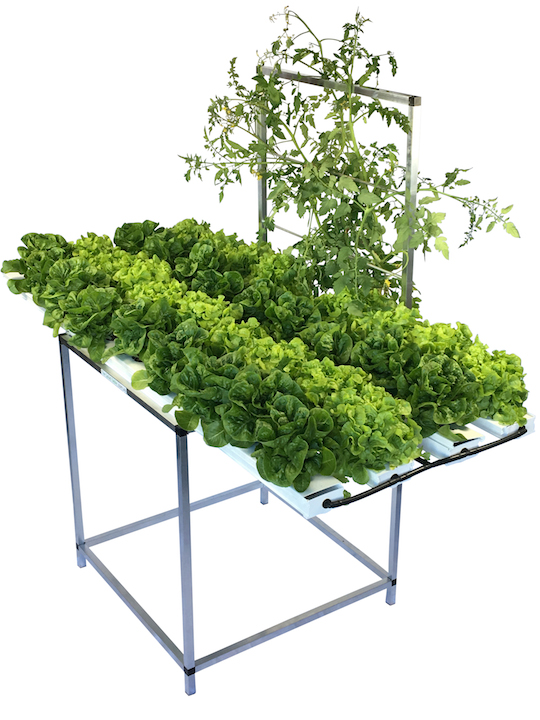 Win a Salad Table