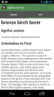 Forest Insect Pests- screenshot thumbnail