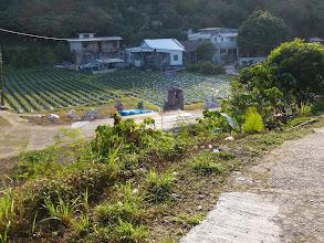 Photo: A farming village