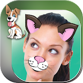 Cute Animal Photo Stickers Cam
