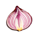 Onion Search Engine icon