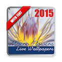 Macro Flowers Live Wallpaper icon