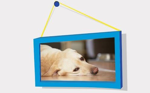 Dogs Puzzle:Labrador Retriever - náhled