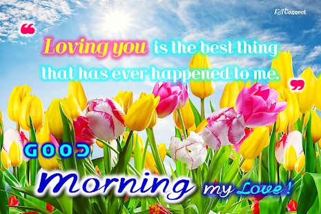 Good Morning my Love - náhled