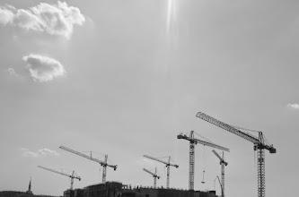 Photo: giants sunbathing