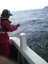 """Photo: ふぃ、フィッシュ! 今度はのった! 1発目は""""FISH""""の声がでかすぎて、ヒットした魚がばれてました!"""