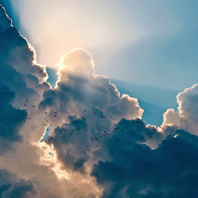 Light by William Schmid - Landscapes Cloud Formations