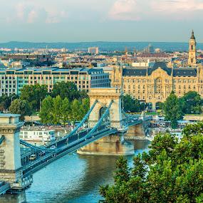 Scenic View of Budapest by Mo Kazemi - Buildings & Architecture Public & Historical ( city scape, budapest hungary, chain bridge, city, basilica, danube, cityscapes, cityscape, budapest, landscape, hungary, architecture )