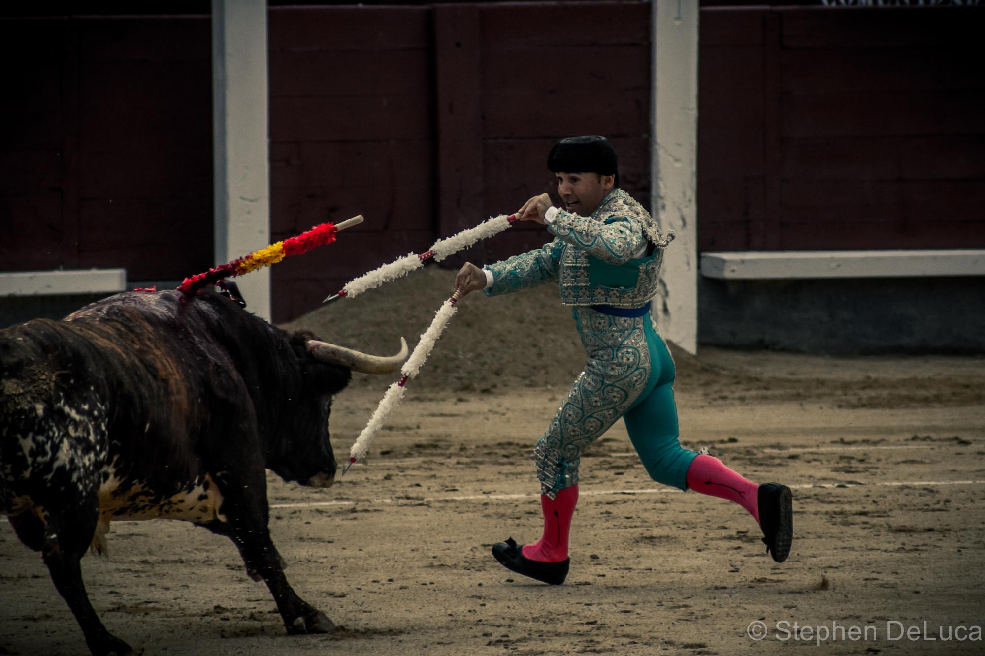 Photo: Bullfight-8