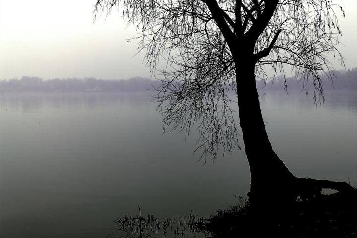In riva di NicoGovoni