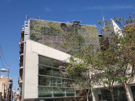 Resultado final del jardín vertical de San Vicente del Raspeig