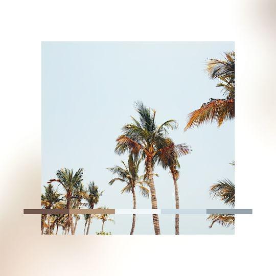 Summer Color Palette - Instagram Post Template