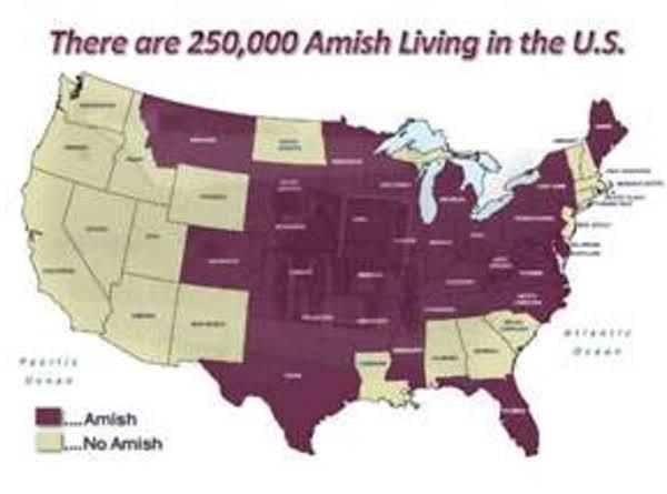 Amish Granulated Soap