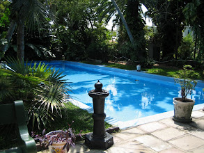 Photo: The pool  at the Hemingway House. In the 1930s, when it was built the pool cost was $ 20,000 -- more expensive than the house itself. This was the first pool in Key West.