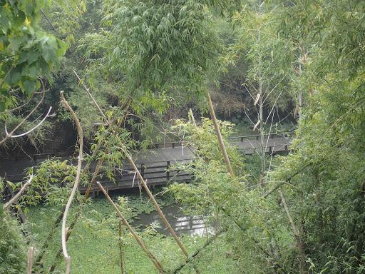 竹林生態濕地公園
