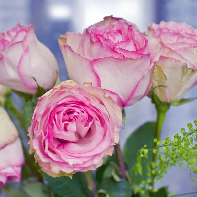 Las flores más apropiadas para decorar la casa