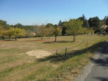 terrain à Saint-Laurent-sur-Manoire (24)