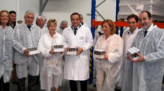 La Renta Agraria de Andalucía aumentó más de un 11% en 2014