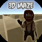 3D Maze puzzle