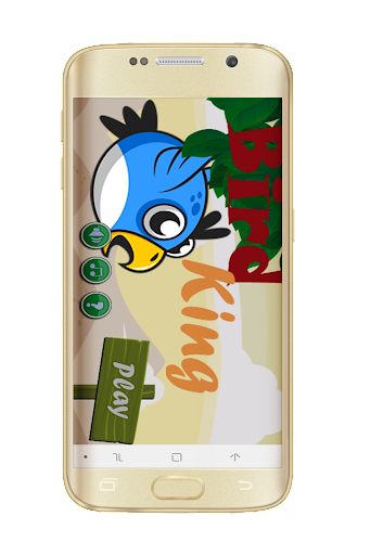 King Bird screenshot 1