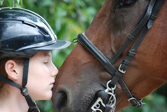 Photo: Amore per il cavallo
