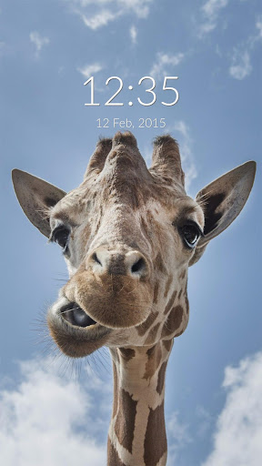 Funny Giraffe Wall Lock