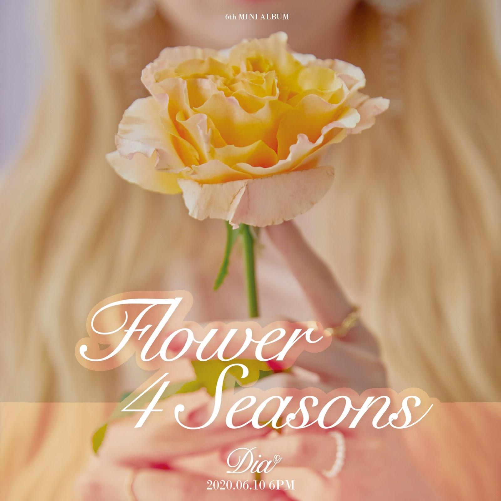 dia 4 seasons