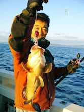 Photo: いい型のオオモンハタです!