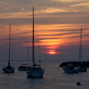 Rockport Sunrise by Edward McRae - Landscapes Sunsets & Sunrises