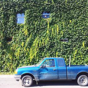 old blue by Kaitlyn Smith - City,  Street & Park  Street Scenes ( washington, trucks, vashon, ivy, old truck )