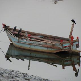 Lonely Boat by Shishir Desai - Transportation Boats ( pwcreflections-dq )